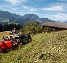 Bergbauer in Alpen mit Panorama